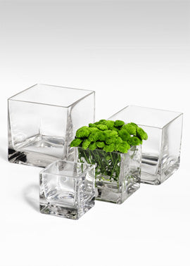 Serene Spaces Living Cube Glass Vases, Set of 4
