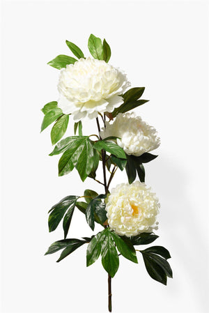 Serene Spaces Living Peach Peony Spray, Measures 43 inch Height, Sold Individually and Pack of 6