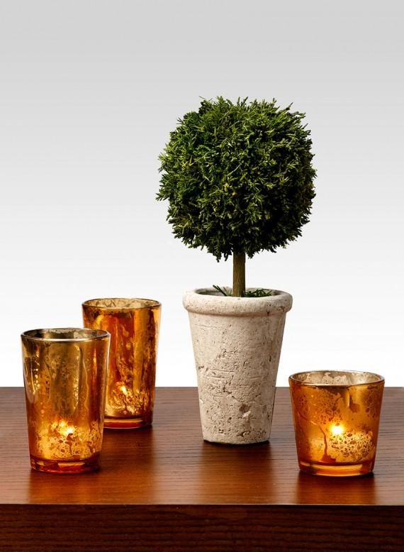 Petite Cypress Ball Topiary