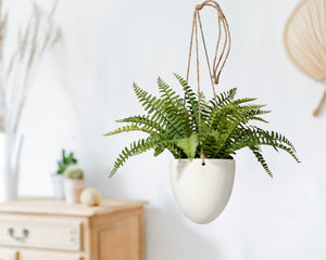 Serene Spaces Living Faux Boston Fern in Hanging Pot, Life Like Plant in 2 Sizes