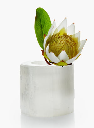 Serene Spaces Living Genuine Selenite Trunk Vase, Floral Centerpiece in 2 Sizes