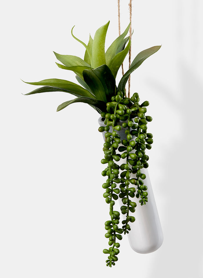 Serene Spaces Living Hanging Ceramic Planter with Mixed Succulents, Ideal for Store Window, Wedding Reception, Home