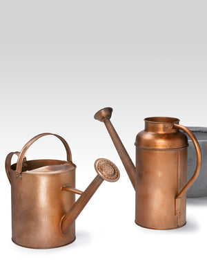 Serene Copper Finish Watering Can