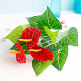 anthurium artificiel rouge