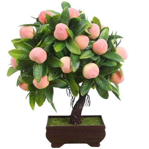 bonsai a fruit