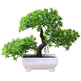 bonsai artificiel botanic