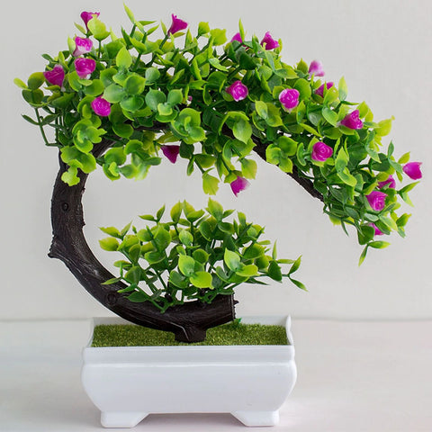 bonsai de couleur