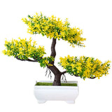 bonsai feuille jaune
