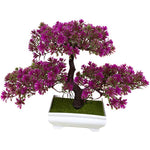bonsai interieur fleuri