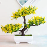 feuille jaune bonsai
