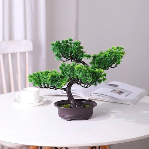pin bonsai