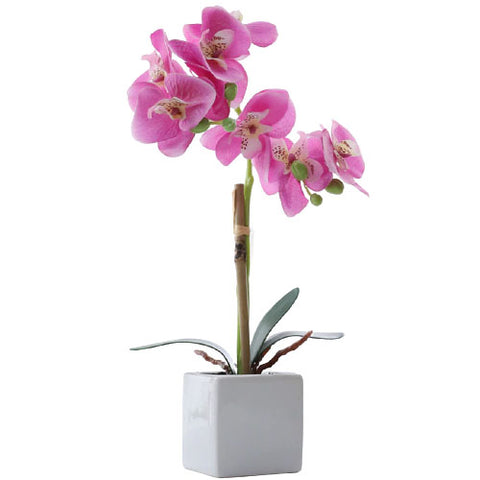 plante artificielle orchidée