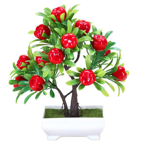 pommier bonsai