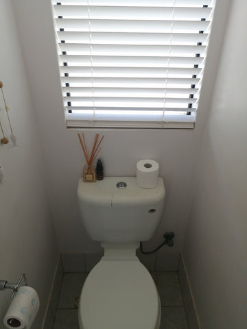 before photo of toilet