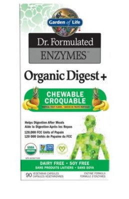DR FORMULATED ENZYMES CHEWS