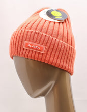 Load image into Gallery viewer, ROBIN RUTH SHIMMER CABLE KNIT BEANIE
