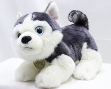 Load image into Gallery viewer, STEVE THE NERVOUS MIYONI HUSKY PUP 9-INCH