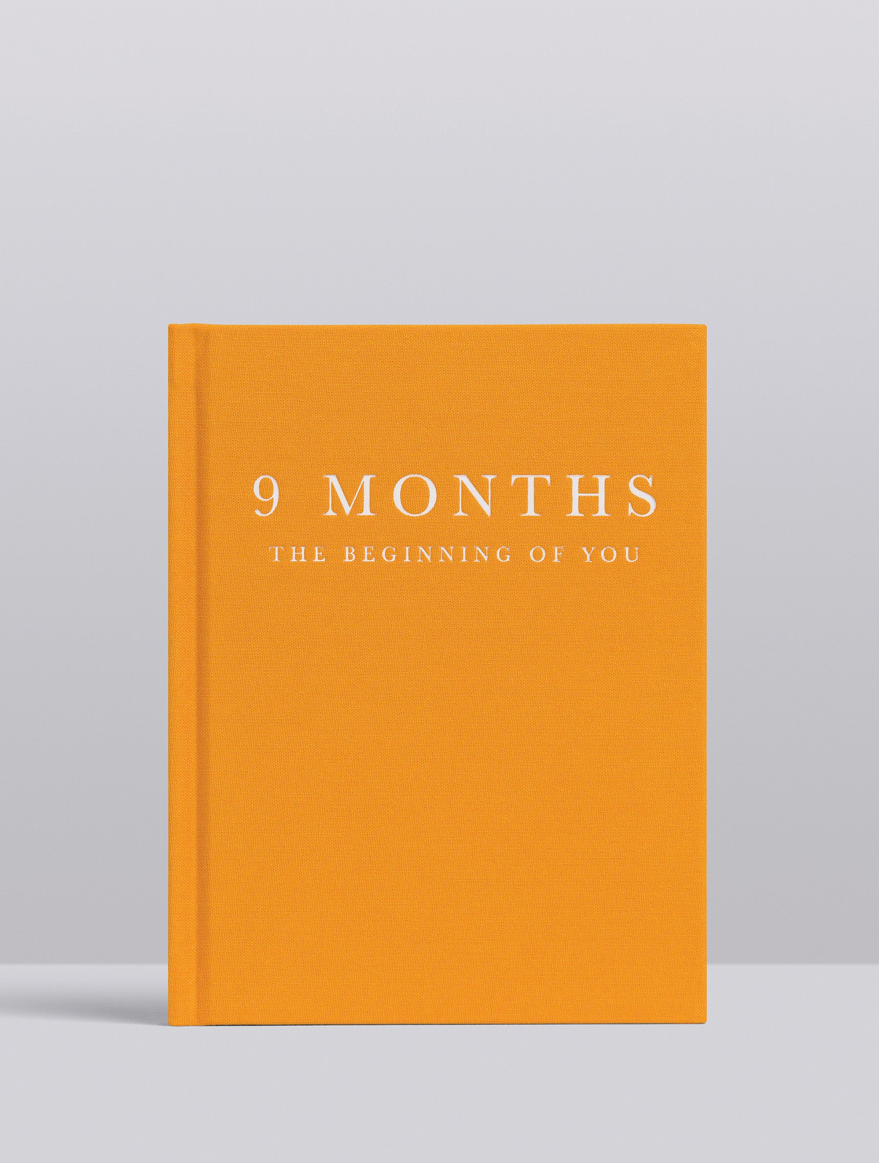 9 Months Pregnancy Journal