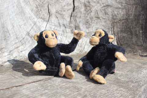 Mini Chimps