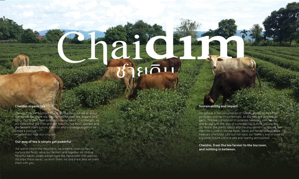 Chaidim Organic Tea - Sustainability and Environment