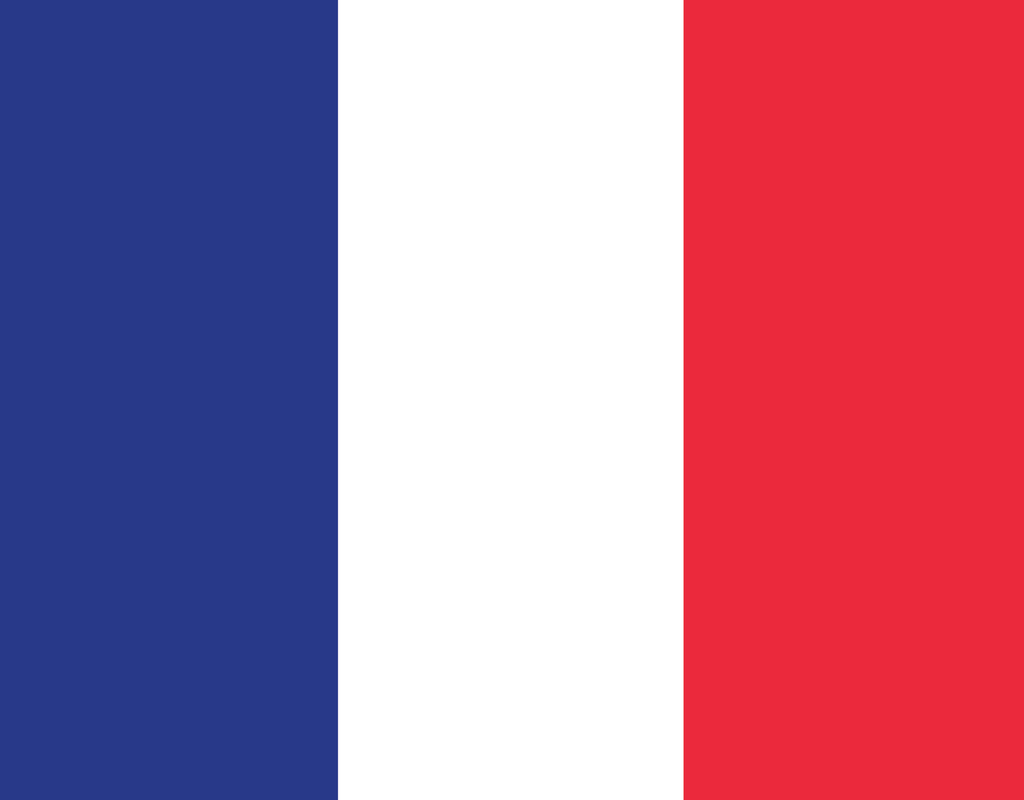 Pleated France Flag - Maskcott