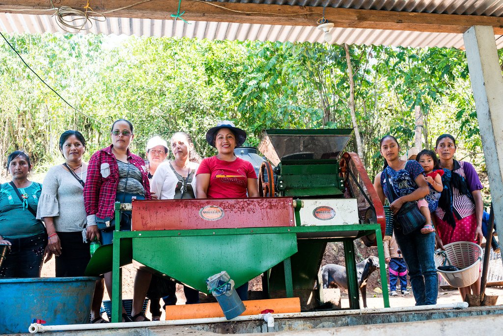 Guatemalan coffee roasters standing by coffee bean sorting machine | Cascadia Coffee Roasters