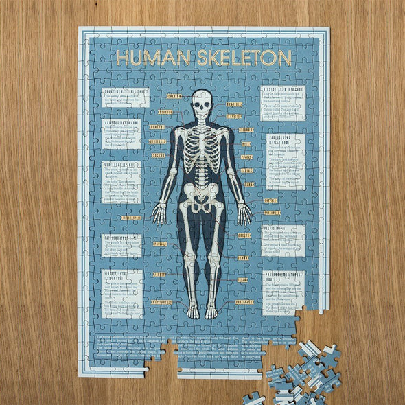 Puzzle Anatomical Skeleton 300 Pezzi