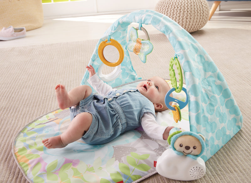 Fisher Price Musical Palestrina Butterfly Dreams Rocketbaby