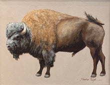 Load image into Gallery viewer, Bull Bison