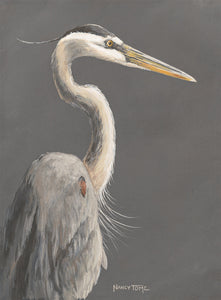 Regal Heron