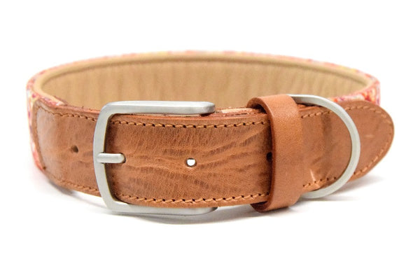Printed webbing/leather collar