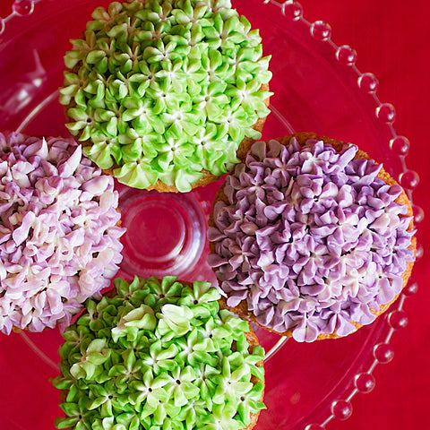 6 pack of Hydrangea Cupcakes DR