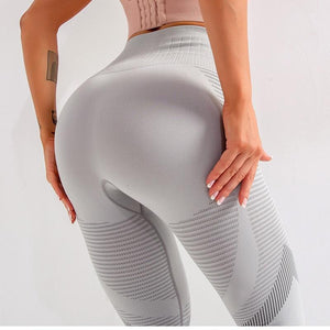 Seamless Yoga Pants - Golden Hart