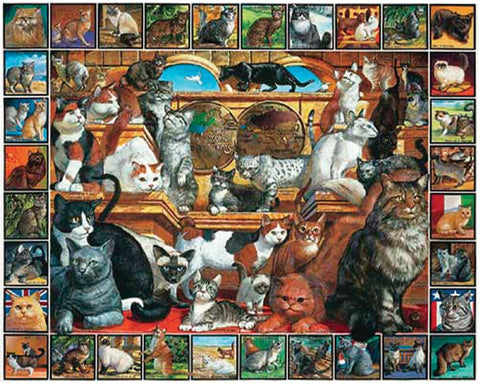 White Mountain JIGSAW PUZZLE WORLD OF CATS 1000