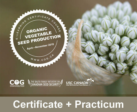 Organic Vegetable Seed Production Certificate & Practicum