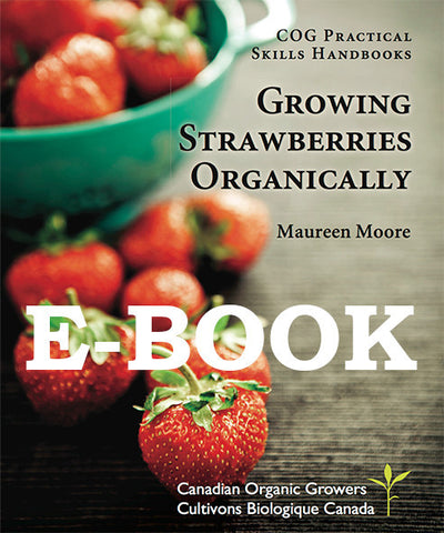 Growing Strawberries Organically (E-BOOK)