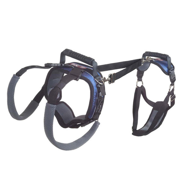 Dolvit CareLift Full Body Harness