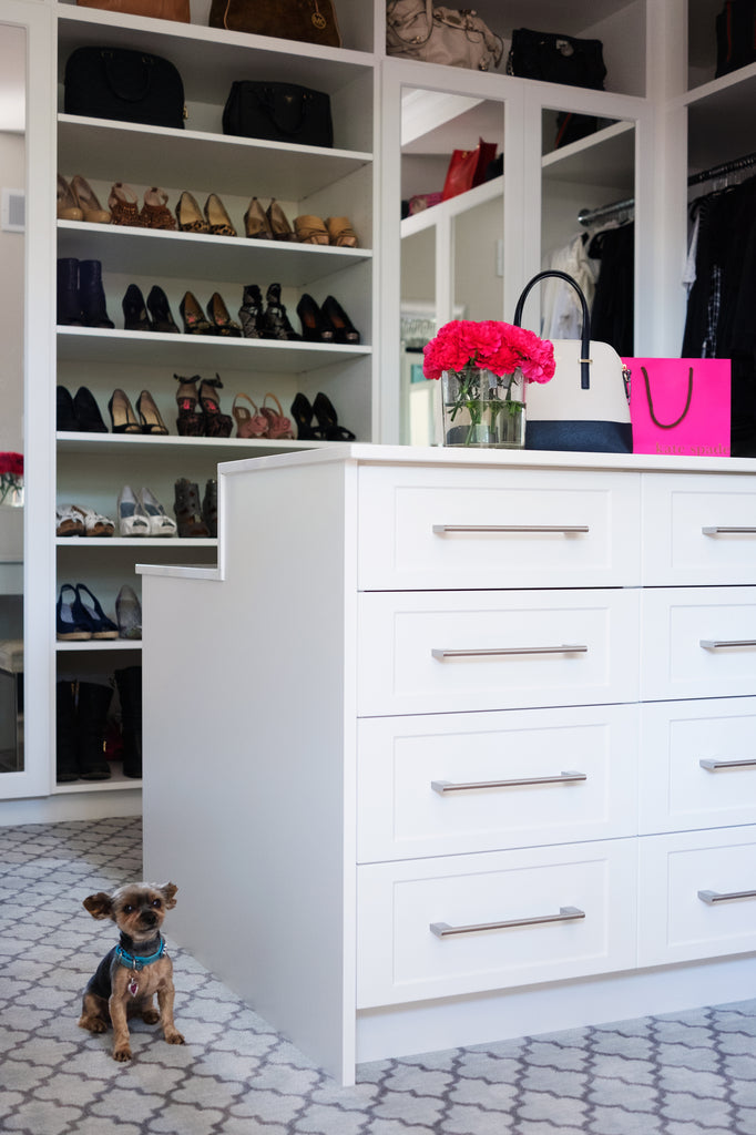 Westboro Infill woman's walk-in closet, shoes, dresser and dog