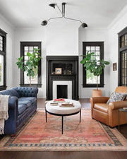 Traditional pattern rug in a classic living room.