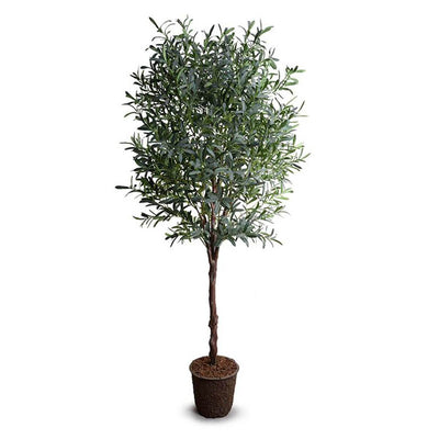 The Olive Tree Large has slender, silvery gray-green leaves on a realistic artificial trunk.