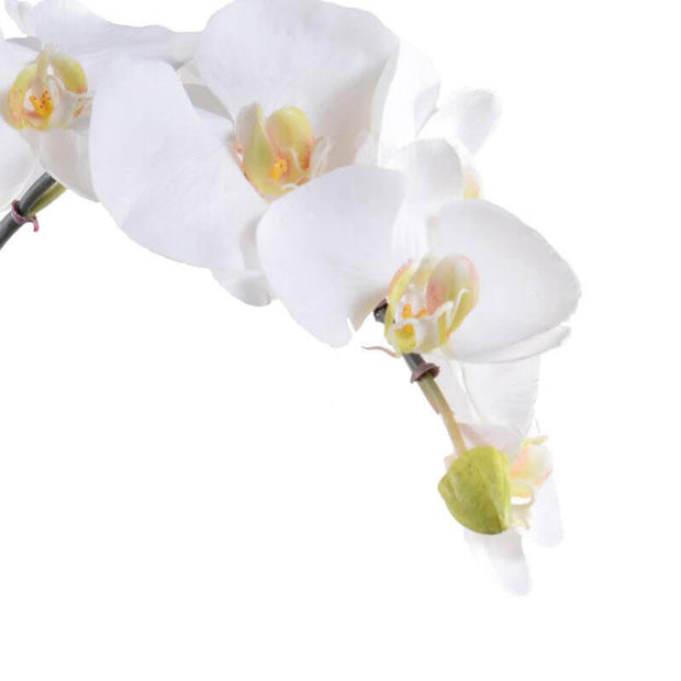 Realistic looking faux white orchid flowers.