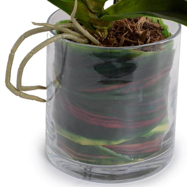 Glass cylindrical vase and faux leaf wrapped roots on the artificial orchid.