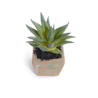 The Potted Succulent - Aloe Plant is a small fake aloe plant with a clay pot.