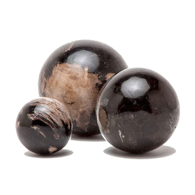 Decorative object wooden spheres made of petrified wood, polished to a high gloss.