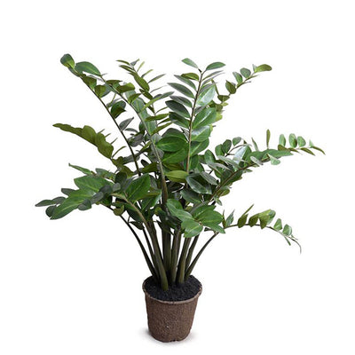 The Zamiifolia Plant is a fake plant with long arching stems with rounded, dark green leaves.