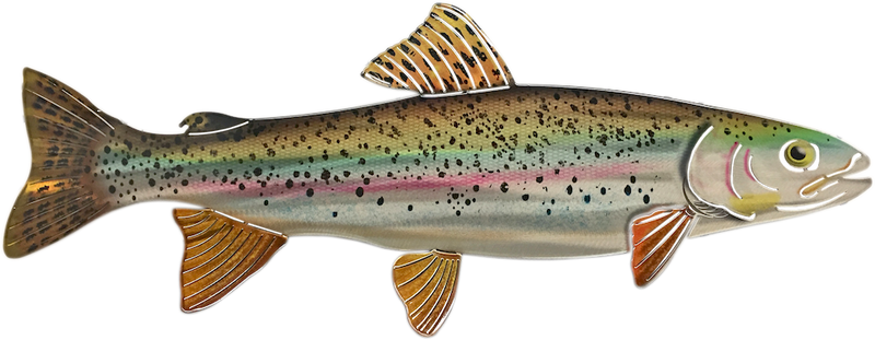 Rainbow Trout Metal Wall Hanging