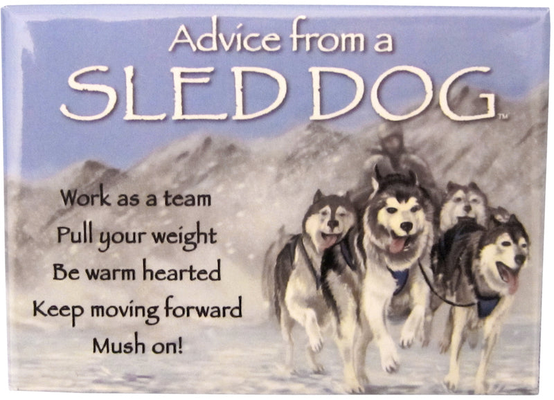 Advice From A Sled Dog Magnet