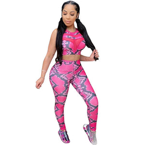Snakeskin Print 2 Piece Crop Top and Pants Sporty Active Wear