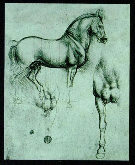 Da Vinci - The Horse DAV02