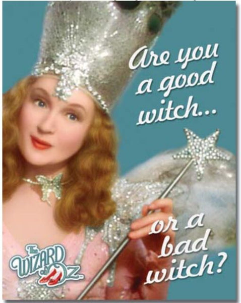 Are You A Good Witch Metal Sign